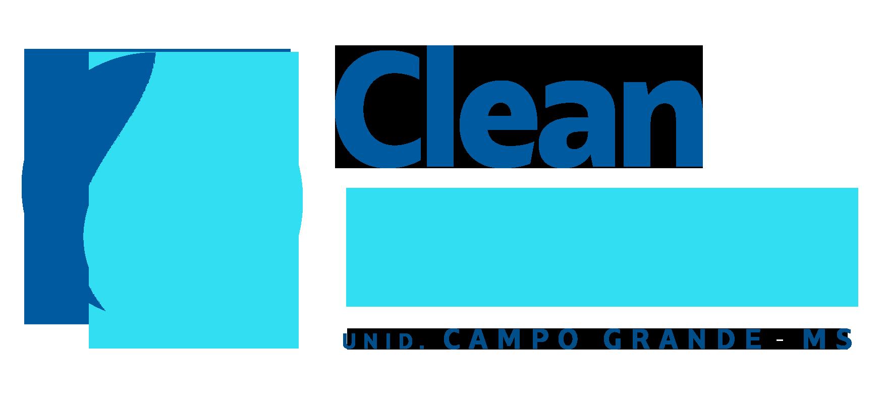 Clean House MS - Higienização e Cursos de Lavagem a Seco de Estofados Delivery